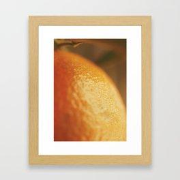Orange peel, macro photography, fine art print, texture, for bar, home decor or interior desig Framed Art Print