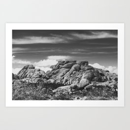 Big Rock 7395 Joshua Tree Art Print