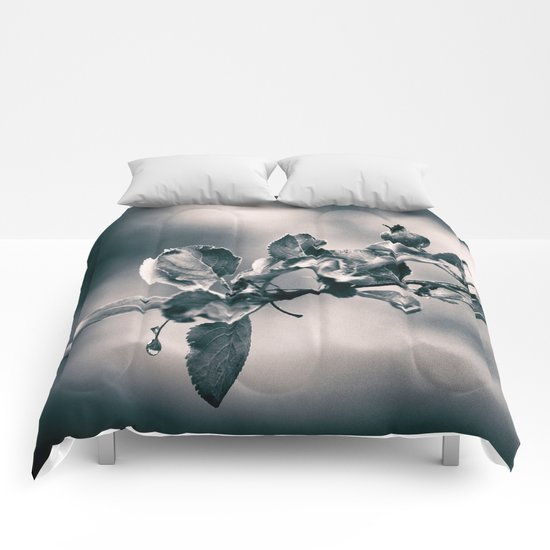 After the Rain Comforters