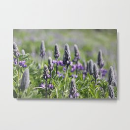 Wildflowers in Vik Metal Print