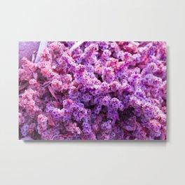 Rest Stop Flowers ~ Salt Flats, Utah Metal Print