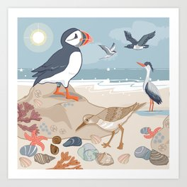 Coastal Birds By The Sea Art Print
