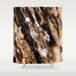 Tree Bark Macro Shower Curtain