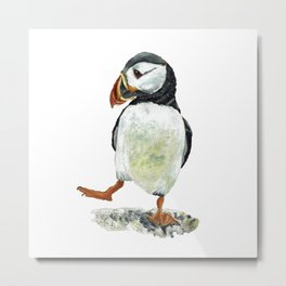 Dancing puffin Metal Print