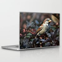 sparrow Laptop & iPad Skins featuring Sparrow by Elaine C Manley