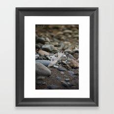 ... walk on the beach ... Framed Art Print