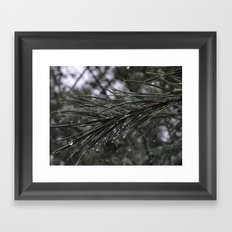 The Pines Framed Art Print