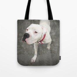 TSUKi (shelter pup) Tote Bag