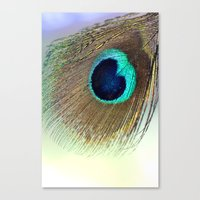 peacock feather Canvas Prints featuring Peacock feather by Hannah