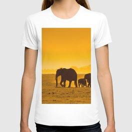 Elephants Amboseli national park in Kenya T-shirt