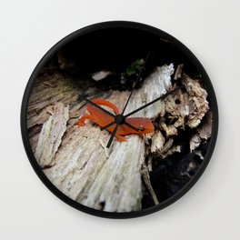 Red Newt Wall Clock
