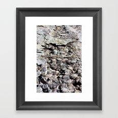 Dinosaur Skin Framed Art Print
