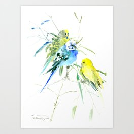 Parakeets green yellow blue bird decor Art Print