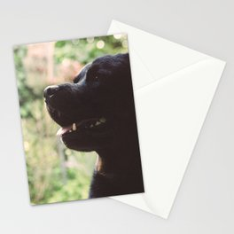 CHILL-DOG Stationery Cards