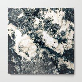 Nature rocks Metal Print
