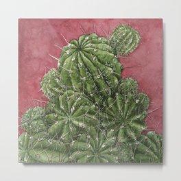 mexican cactus Metal Print