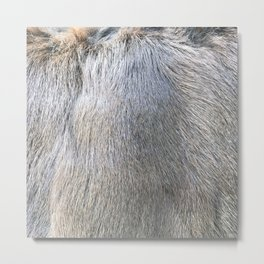 Rabbit Fur Metal Print