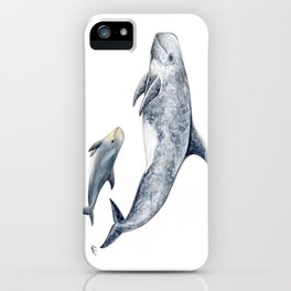 Risso´s Dolphin iPhone Case