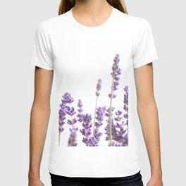 Purple Lavender #4 #decor #art #society6 T-shirt