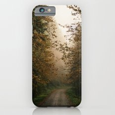 Oregon Fall Road iPhone 6 Slim Case