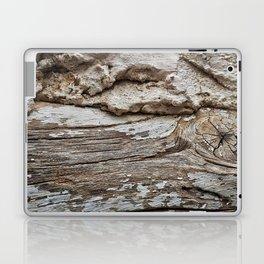 029 Laptop & iPad Skin