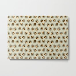 Sprouting Quinoa Metal Print