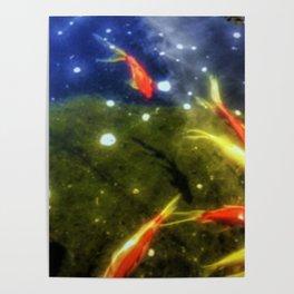 Taking A Swim Poster