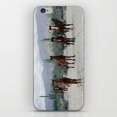 Bahía de los Ángeles Wild Horses iPhone & iPod Skin