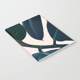 Ficus elastica 2 Notebook