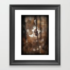 Pussy Willow Winds Framed Art Print