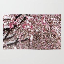 Elegant pink white nature snow cherry blossom floral Rug