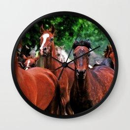 Polish Arabian Mares Wall Clock