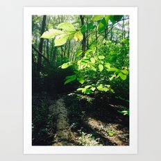 Nature Excites Me (: Art Print