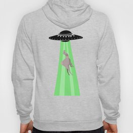 Aliens abduction camel Hoody