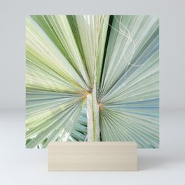Fanned Palms Mini Art Print