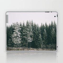 Winter VIII Laptop & iPad Skin