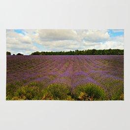 Cotswold Lavender Rug