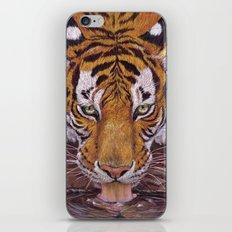 Thirsty Tiger iPhone & iPod Skin