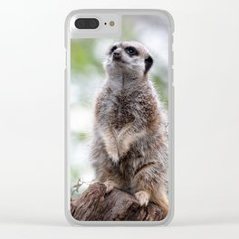 Meerkat on guard duty Clear iPhone Case