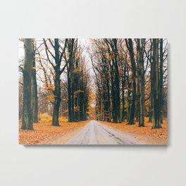Feels Like A Fairytale (Landscape) Metal Print