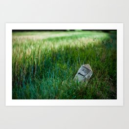 wheat and stone Art Print