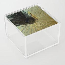Aesthetic Movement Acrylic Box