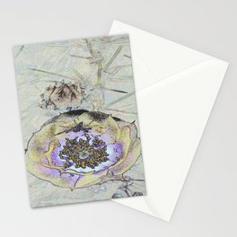 Live In The Desert Stationery Cards