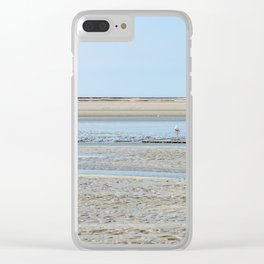 A flock of seagulls in the bay Clear iPhone Case