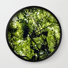 Sunlight Filtering through Ferns and Palm Trees in the Lush Rainforest of Mombacho Volcano, Nicaragu Wall Clock