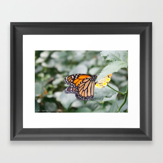 A Moment Framed Art Print