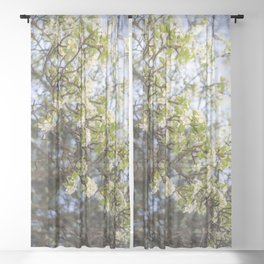 Pear Blossoms of Sonora Sheer Curtain