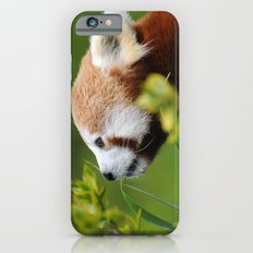 Red Panda 1 Slim Case iPhone 6s