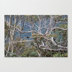 Australiana No. 2 Canvas Print
