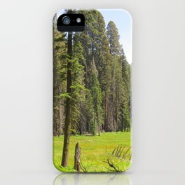 Huckleberry Meadow iPhone Case